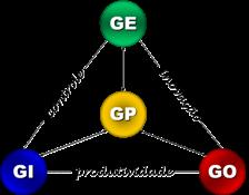 Modelo Intelligentia de Gestão